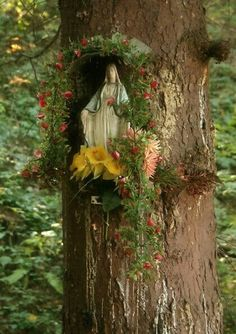 This is so beautiful, I have a tree in our yard that would be perfect for this idea. Always wondered what I could put in there.
