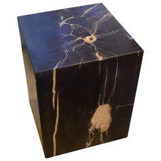 Petrified Wood Side Table  Andrianna Shamaris Petrified Wood. We source the highest quality petrified wood.
