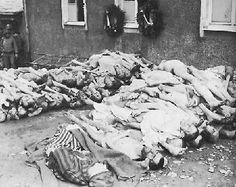 holocaust | The Holocaust
