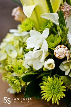 Flores verdes y conchas/Green flowers with shells