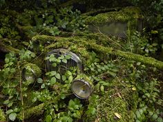Paradise Parking is a new series of work (and soon to be book by the same title) by American-born, Paris-based photographer Peter Lippmann. The photos capture abandoned cars in a state of complete decay as each is gradually consumed by nature. The works will soon be on display in Brussels courtesy Gallery Sophie Maree.