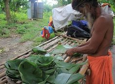 Making of Banana Leaf Plates which Replace Plastic as a Climate Solution - India news - community action for sustainability - CASwiki Banana Leaf Plates, Banana Leaves, Simplicity Is Beauty, Nasi Lemak, Diy Gift Box, Food Out, Earthship, Food Crafts, Food Containers