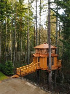 The Outpost Treehouse - Wild Tree Woodworks Tiny House Cabin, Log Cabin Homes, My House, Treehouse Living, Woodland House, Tree Hut, Cool Tree Houses, Tree House Designs, Unusual Homes