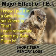 Short Term Memory Loss...