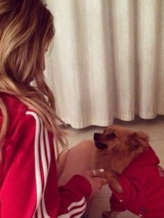perrie edwards dog | CUTE PICTURE! Perrie Edwards and her dog Hatchi with Zayn Malik wear ...
