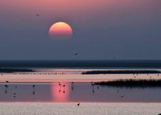 National Park Doñana, Huelva, Spain