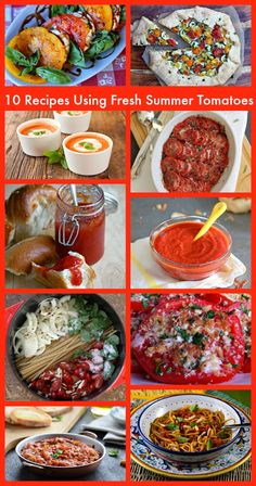 Stuff I've Gotta Share and You've Gotta See | Recipe Girl  10 Recipes Using Fresh Summer Tomatoes