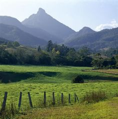 Wollumbin Mount Warning National Park. Have clambered to the top a number of times