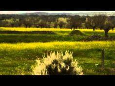 Territorio de la ausencia, de Ramón García Mateos - Parte XI - De: Triste es el territorio de la ausencia, 1998 - Voz: Joaquín de la Buelga