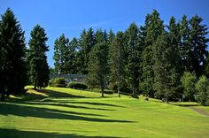 Bellevue Golf - I call this my home course.  A great walk.