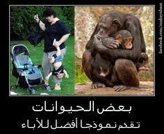 الإنسان و الحيوان