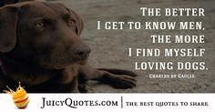 One reason a dog can be such a comfort when youre feeling blue is that he doesnt try to find out why -Unknown Cute Dog Quotes, Best Quotes, I Love Dogs, Cute Dogs, Bettering Myself, Picture Quotes, Best Dogs, Cat Lovers, How To Find Out