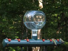another version - really cool hummingbird feeder to DIY