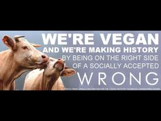 Vegan. Get educated on the abuse and torture they go through just so you can eat something disgusting that's bad for you.