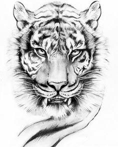 """66 Likes, 9 Comments - Viviana Ceesira Troiano (@ceesira) on Instagram: """" #Art #draw #drawing #tattooart #tattooartist #tattooed #ink #inked #tattoos #lion #tiger…"""""""