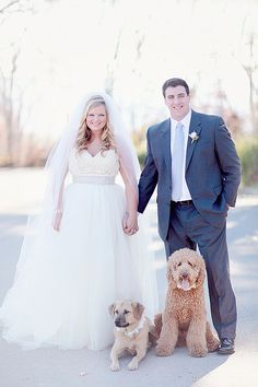 flower collars on these precious dogs at the wedding!