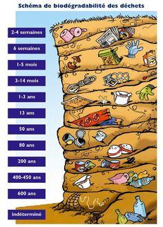 Durée de vie des déchets dans la nature, infographie