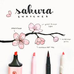 I did another swatch, this time with a tombow dual brush in the colour bc it's very similar to the stabilo boss pastel pink colour Bullet Journal Notebook, Bullet Journal Ideas Pages, Bullet Journal Inspiration, Journal List, Stabilo Boss, Bullet Journal Aesthetic, Gel Ink Pens, Flower Doodles, Tombow