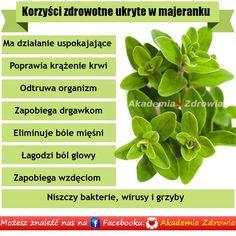 Korzyści zdrowotne majeranku - Zdrowe poradniki Detox, Spices, Herbs, Health, Plants, Cake, Fit, Kitchen, Food
