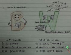 Medicowesome: How to remember the difference between Wernicke's area and Broca's area