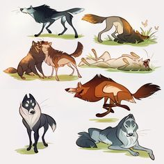 bunch of wolf doodles by CoconutMilkyway Cute Animal Drawings, Animal Sketches, Cartoon Drawings, Cute Drawings, Art Sketches, Wolf Cartoon Drawing, Wolf Character, Creature Drawings, Furry Drawing