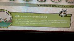 Farmacognosia en Tlatelolco
