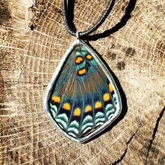 Red Spotted Purple Necklace Purple Necklace, Turquoise Necklace, Wings, Butterfly, Pendant Necklace, Red, Jewelry, Fashion, Jewlery