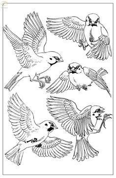 Воробьи — Yandex.Disk Japanese Bird, Bird Drawings, Bird Art, Drawing Tips, Views Album, Tattoo Inspiration, Coloring Pages, Birds, Yandex Disk