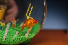National Geo Wild Announces 'Fish Bowl II' & 'Dr. Pol' Marathon for Superbowl Sunday *** I loved this last year!