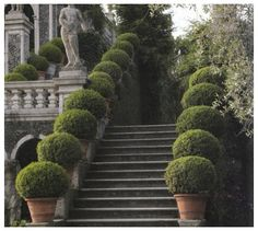 An exceptional example of shearing your boxwoods into a beautiful entry.