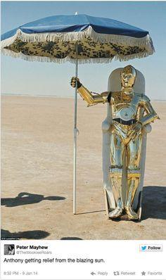 Meedia: Chewbacca-Darsteller zeigt Star-Wars-Fotos