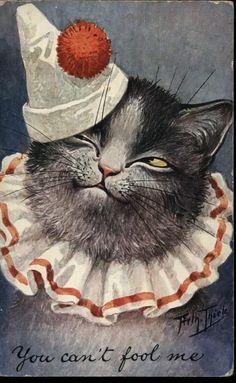 1908 Arthur Thiele Signed Kitty Postcard!