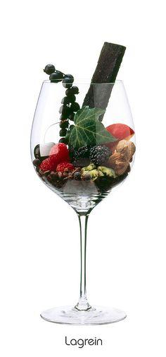 LAGREIN Blackberry, black cherry, black currant, almond, raspberry, plum, ivy, artichoke, juniper, clove, nutmeg, Charred Wood, coffee