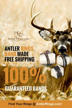 Antler Rings for him and her! Hand made one by one. Each ring is 100% unique! Rugged and Strong for the Hunter in your life! AntlerRings.com