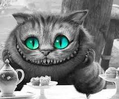 Resultado de imagen para imagenes del gato rison