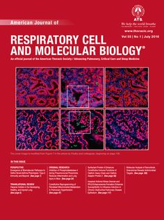 #10. American Journal of Resiratory Cell and Molecular Biology (ISSN: 1044-1549). Impact factor: 4.082