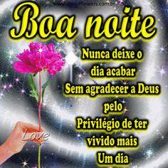 LOVE OF FLOWERS: Boa noite