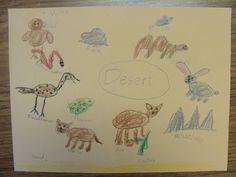 Habitat ideas: Desert