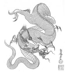 Dragon Tattoo Design by Horimouja Japanese Tatoo, Japanese Dragon Tattoos, Japanese Art, Japanese Style, Dragon Ball Gt, Dragon Art, Animal Drawings, Art Drawings, Tattoo Sketch Art