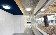 Palma day center : flexoarquitectura