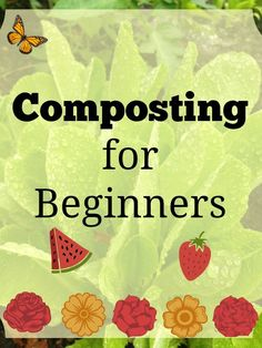 Composting is one of the easiest (and cheapest!) ways to improve your garden soil. Check out the basics and get your compost pile going!