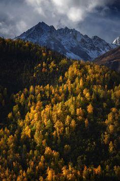 ~~Autumn forest | Talkeetna Mountains, Alaska | by Carlos Rojas~~