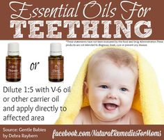 young living essential oils for teething babies
