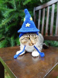 Cat Hat Crochet Pattern Hat for Cat Crochet by iheartneedlework