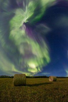 northern lights in Sasatchewan Yukon Alaska, Northen Lights, Alaska Highway, Pretty Sky, Nature Adventure, Amazing Sunsets, Natural Phenomena, Out Of This World, Nature Scenes