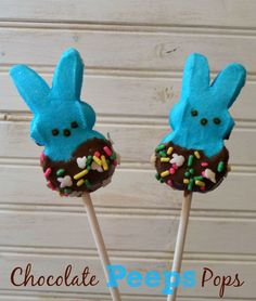 Outnumbered 3 to 1: Chocolate Peeps Pops