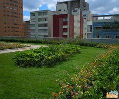 Ficaram sabendo da novidade? São Paulo ganhou seu primeiro telhado verde com cobertura de Mata Atlântica! Saiba mais no blog: ow.ly/YZf8R