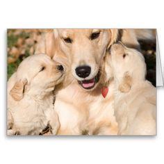Golden Retriever Happy Mother's Day Card - #zazzle
