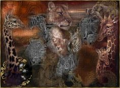 Collage done by me - africa