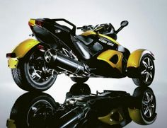Classic Cam Am Yellow/black.